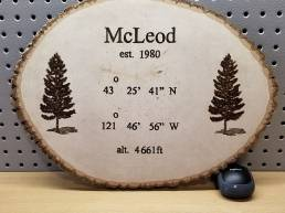 McLeod - Rustic Mountain Cabin Plaque